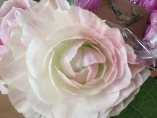 いろいろな表情の薔薇たち